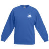 Royal blue sweatshirt-0